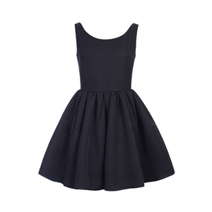 Pleated Sleeveless Puff Black Skater Dress