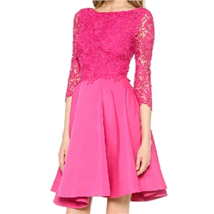 Lace Panel Cropped Backless Sheer Rose Dress