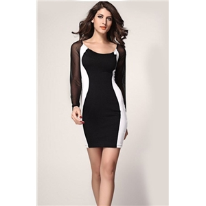 Black Sheer Mesh Long Sleeve Bodycon Dress