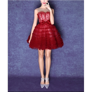 Wine Red Sleeveless Lace Party Dress