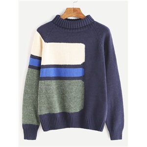 Color Block Turtleneck Raglan Sleeve Sweater