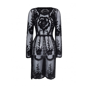 Black Embroidered Lace Long Sleeve Sheer Dress
