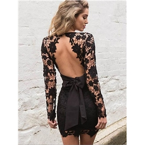 Black V-neck Sheer Lace Sleeve Backless Bodycon Mini Dress