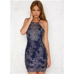 Backless Bodycon Lace Embroidery Dress