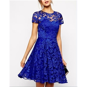 Lace Cut Out Skater Dress