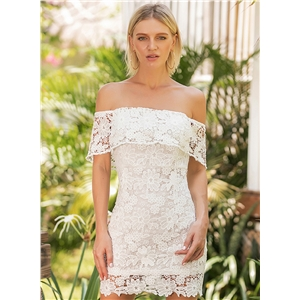 Strapless Lace Backless Skinny Day Dress