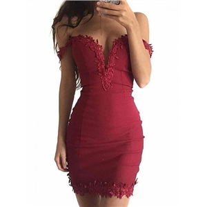 Plunge Lacework Zip Back Chic Women Bodycon Mini Dress