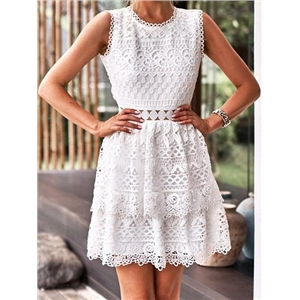 White Cut Out Detail Open Back Sleeveless Chic Women Lace Mini Dress
