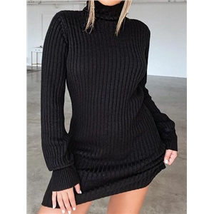 Black Ribbed High Neck Long Sleeve Chic Women Bodycon Mini Dress