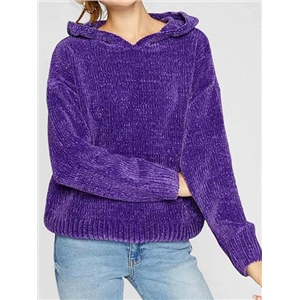 Purple Long Sleeve Chic Women Knit Hoodie