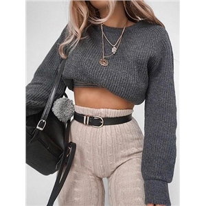 Gray Long Sleeve Chic Women Knit Crop Sweater