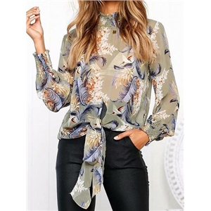 Polychrome Chiffon Floral Print Tie Front Long Sleeve Blouse