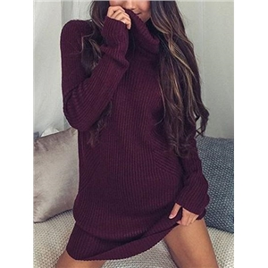 Burgundy Ribbed High Neck Long Sleeve Women Mini Dress