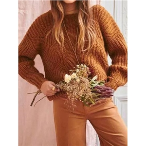 Dark Brown Crew Neck Long Sleeve Women Knit Sweater