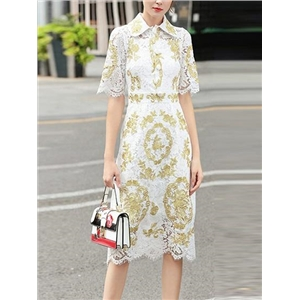 White Lapel Button Placket Front Women Lace Dress