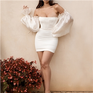 2020 autumn new sexy off-the-shoulder one-word neck wild lantern sleeve tube top dress